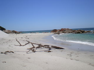 Bay_of_fires202