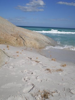 Bay_of_fires111_3