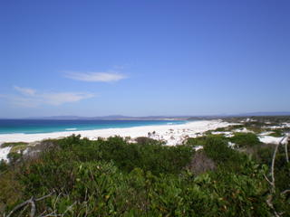 Bay_of_fires139